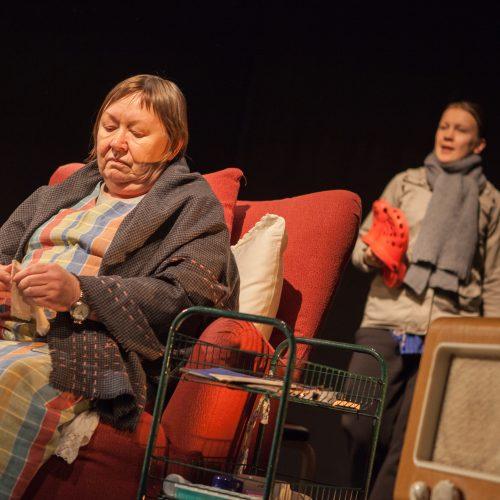 Vanharoosa. Marja-Leena Mäkelä ja Tanja Huuskonen.